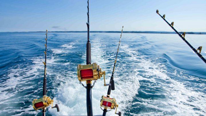 Рыболовные снасти с катушой