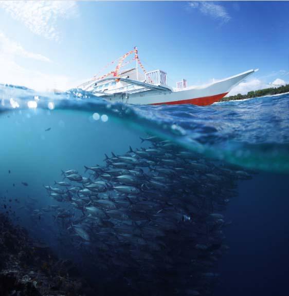 Рыбалка на водном транспорте